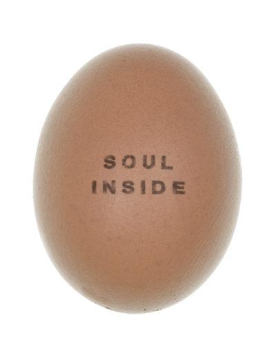 soul inside testo