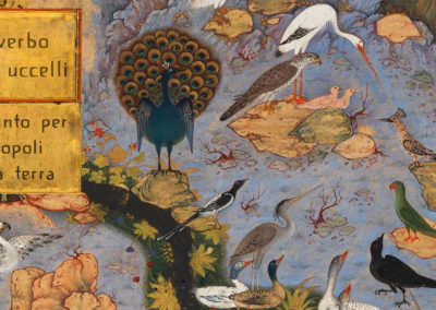 Il verbo degli uccelli theater show (Graphic project)